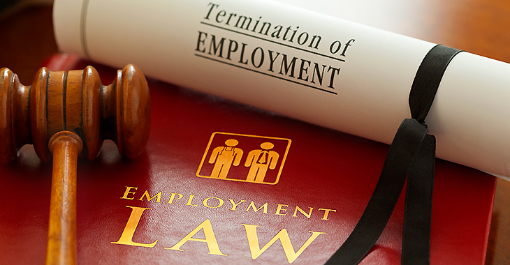 Image result for employment law